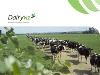 New Zealand's dairy industry