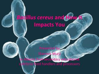 Bacillus cereus  and How It Impacts You