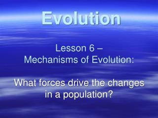 Lesson 6 –  Mechanisms of Evolution: What forces drive the changes in a population?