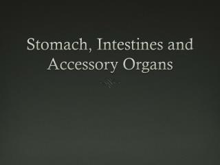 Stomach, Intestines and Accessory Organs