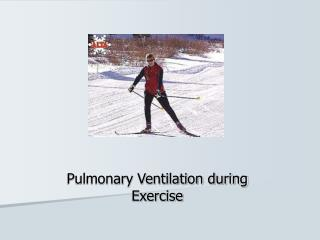Pulmonary Ventilation during Exercise