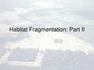 Habitat Fragmentation: Part II