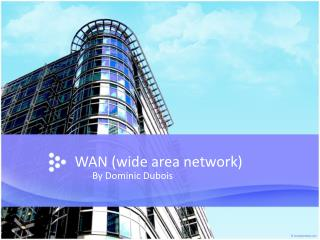 WAN ( wide  area network)