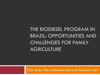 The  Biodiesel  Program  in  Brazil :  opportunities  and  challenges for family agriculture