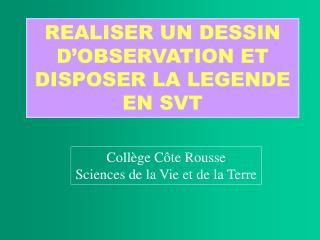 REALISER UN DESSIN D OBSERVATION ET DISPOSER LA LEGENDE EN SVT