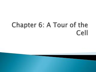Chapter 6: A Tour of the Cell