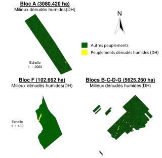 Bloc F (102.662 ha) Milieux d�nud�s humides (DH)