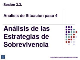 Sesión  3.3. Análisis  de  Situación paso  4 Análisis  de  las Estrategias  de  Sobrevivencia