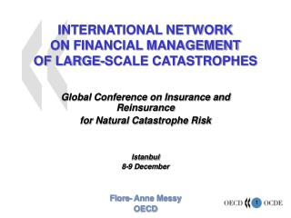 INTERNATIONAL NETWORK  ON FINANCIAL MANAGEMENT  OF LARGE-SCALE CATASTROPHES