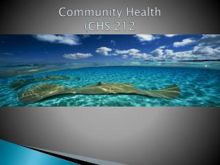Community Health (CHS 212