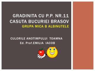 Gradinita  cu P.P. Nr.11  Casuta bucuriei  Brasov GRUPA MICA B  Albinutele