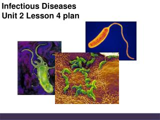 Infectious Diseases Unit 2 Lesson 4 plan