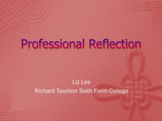 Professional Reflection
