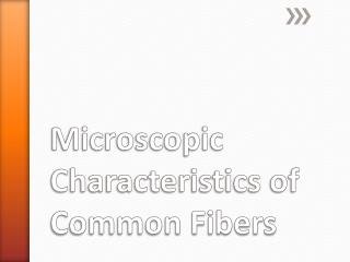 Microscopic Characteristics of Common Fibers