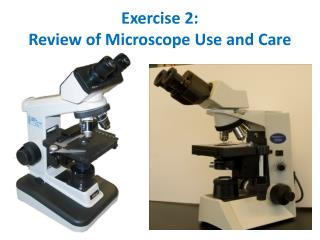 Exercise  2: Review of Microscope Use and Care