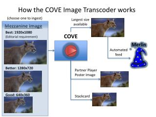 How  the COVE Image  Transcoder  works