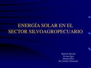ENERGÍA SOLAR EN EL  SECTOR SILVOAGROPECUARIO