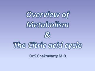 Overview of Metabolism  & The Citric acid cycle
