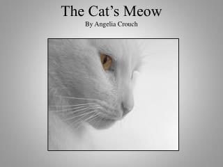 The Cat�s Meow By Angelia Crouch