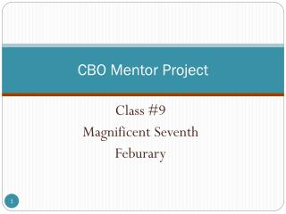 CBO Mentor Project