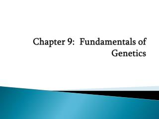 Chapter 9:  Fundamentals of Genetics
