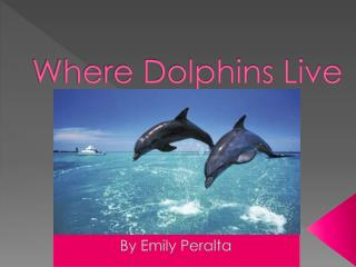 Where Dolphins Live