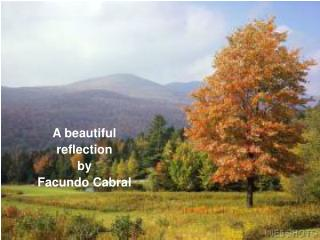 A beautiful  reflection  by  Facundo Cabral