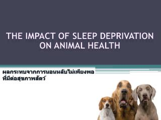 The Impact of Sleep deprivation on Animal Health