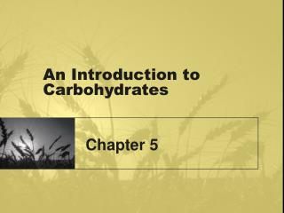 An Introduction to Carbohydrates