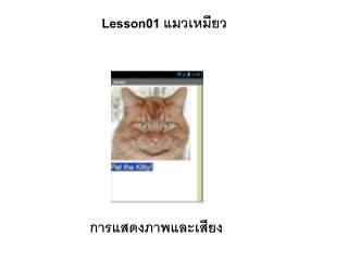 Lesson01  แมวเหมียว