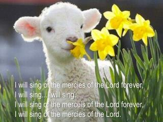 I will sing of the mercies of the Lord forever , I  will sing...I will sing .