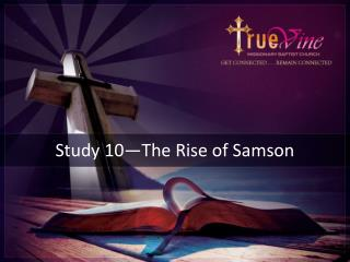 Study  10—The Rise  of Samson