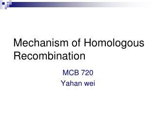 Mechanism of Homologous Recombination