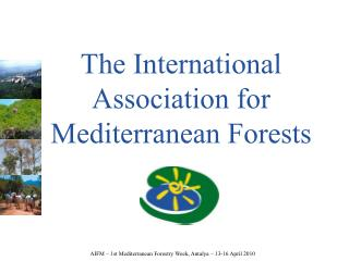 The International Association for Mediterranean Forests