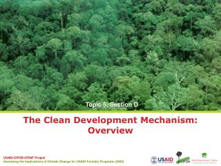 The Clean Development Mechanism: Overview