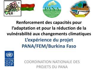 COORDINATION NATIONALE DES PROJETS DU PANA