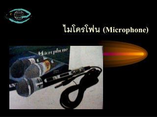 ไมโครโฟน (Microphone)