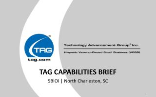 TAG CAPABILITIES BRIEF