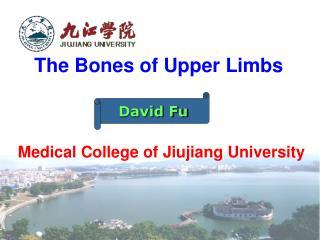 The Bones of Upper Limbs Medical College of Jiujiang University