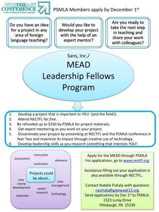 Sans, Inc./ MEAD Leadership Fellows  Program