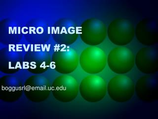 MICRO IMAGE REVIEW #2: LABS 4-6