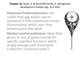 Chapter  16 :  Sirois , S. &  Karmiloff -Smith, A. Ontogenetic development matters (pp. 312-334).
