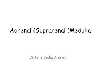 Adrenal (Suprarenal )Medulla