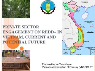 PRIVATE SECTOR ENGAGEMENT ON  REDD +  IN  VIETNAM, CURRENT AND POTENTIAL FUTURE