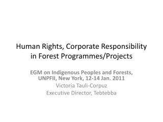 Human Rights, Corporate Responsibility in Forest Programmes