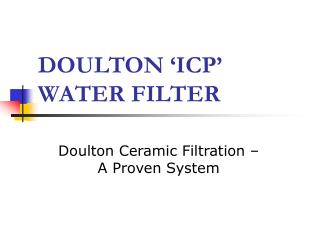 DOULTON 'ICP'  WATER FILTER