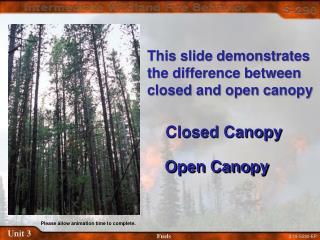 Closed Canopy