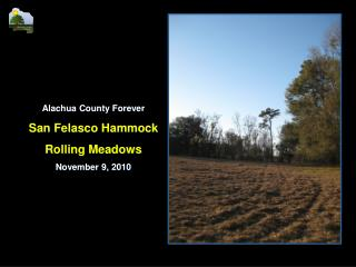 Alachua County Forever San Felasco Hammock Rolling Meadows November 9, 2010