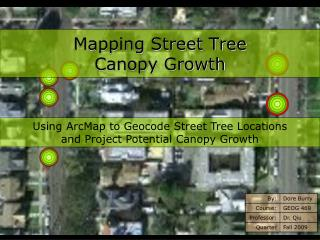 Mapping Street Tree Canopy Growth