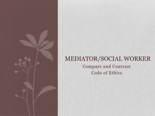 Mediator/Social Worker